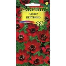 Цветок Адонис Керубино 0,2гр