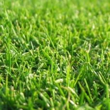 Газон Травосмесь ГНОМ Стандарт 2,5кг Зеленый уголок