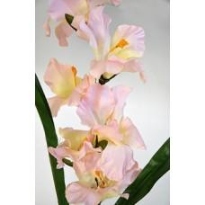 Гладиолус одиночный розовый h-106см  арт.16-0010