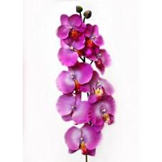Орхидея Фаленопсис одиночная бьюти h-95см  арт.16-0144