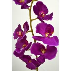 Орхидея Фаленопсис одиночная фиолетовая (силикон,) h-102см  арт.16-0075